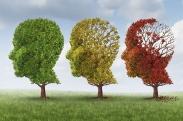 6 Factors that Hasten Mental Decline